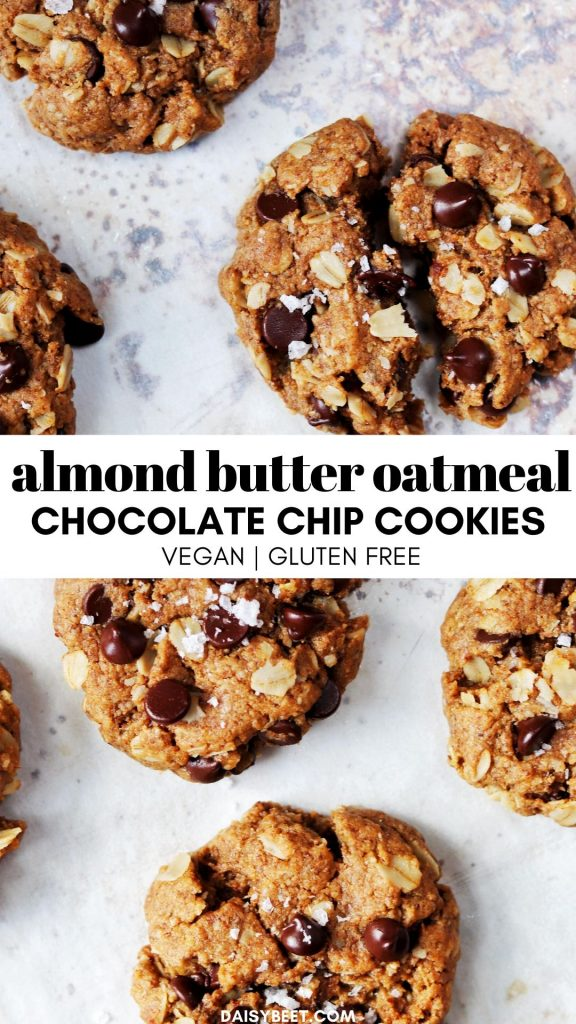 Almond Butter Oatmeal Chocolate Chip Cookie - Daisybeet