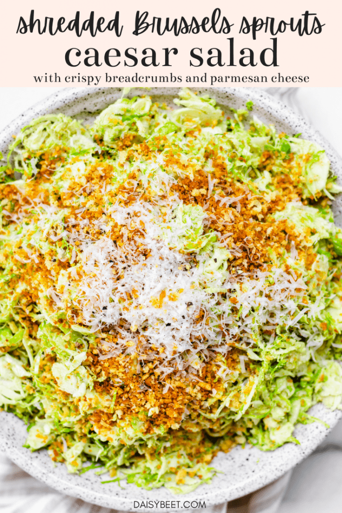 Shredded Brussels Sprouts Salad with Sunflower Seed Caesar Dressing  - Daisybeet