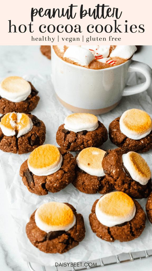 Healthy Hot Cocoa Cookies (Vegan, Gluten Free) - Daisybeet